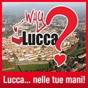Why Lucca