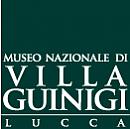 Logo Museo Nazionale di Villa Guinigi